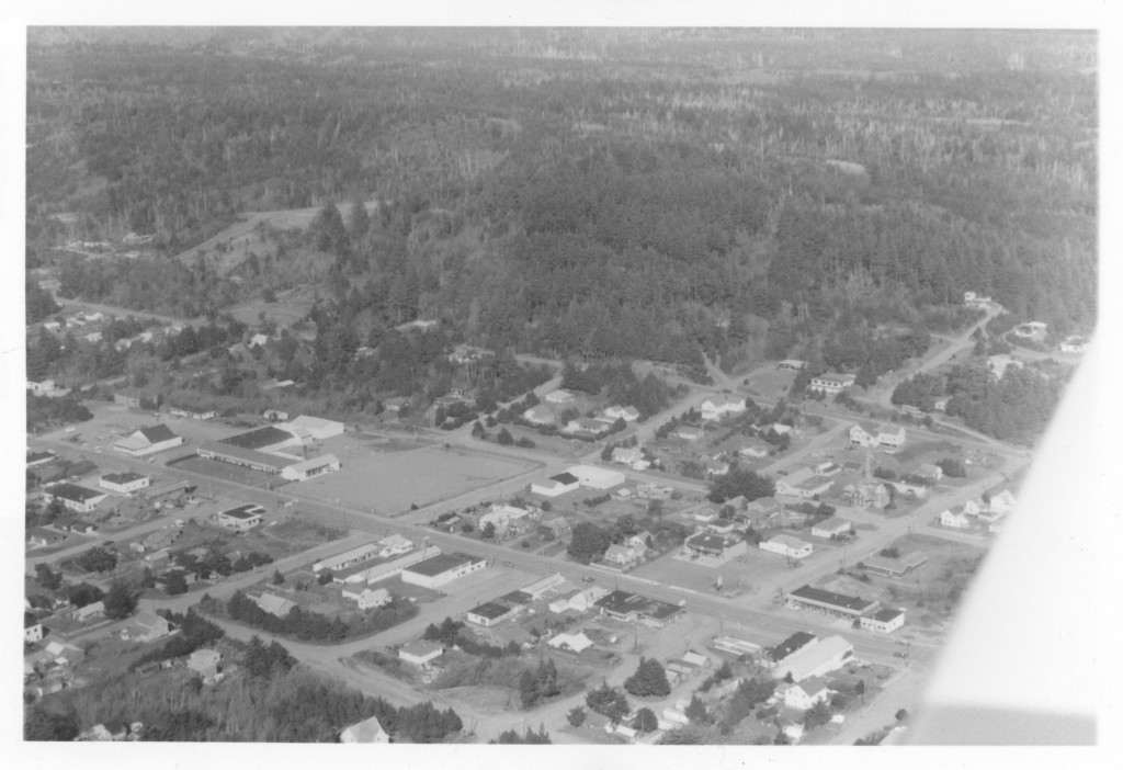 Aerial view of central Port Orford captured on March 22, 1980.