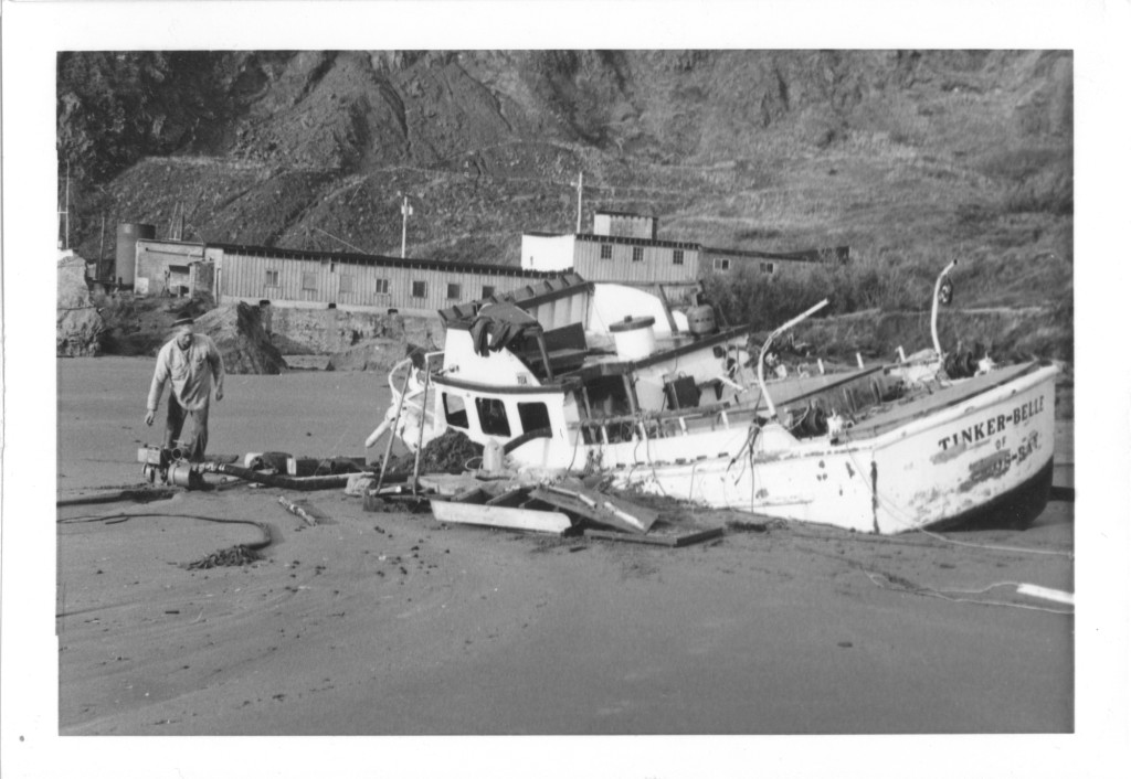 Tinker-Belle washed ashore after shipwreck documented by Alan Mitchell.