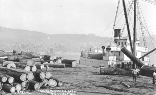 Maritime - Dock - Piling - Loading logs - Port Orford Cedar SS Mary E. Moore c1925